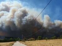 """Incendiile continuă să mistuie Grecia. """"Nu ştim ce ne va aduce ziua de mâine. Suntem cu toţii disperaţi"""""""