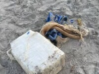 Un pachet de cocaină în valoare de peste un milion de dolari a fost găsit pe o plajă