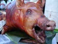 Maraton culinar in Covasna! Vedeta zilei: porcul!