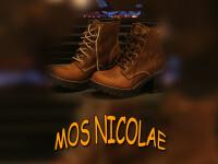 Portret: Votati Mos Nicolae?
