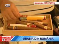 Romania, te iubesc! Lectie de voluntariat in Bistrita