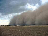 Carambol in Arizona, provocat de o furtuna de praf. 20 de masini avariate
