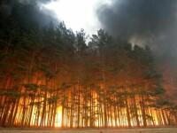 Dupa inundatii si ciclon, Australia se lupta cu incendii devastatoare