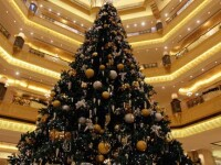 Bradul de la Abu Dhabi: prost-gust de 11 milioane de euro