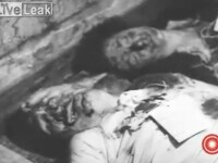 VIDEO socant. Primele imagini de la executia dictatorului Benito Mussolini