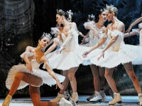 Ansamblu de balet pe gheata de la St. Petersburg revine la Cluj cu Lacul lebedelor