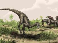Invazia dinozaurilor la Sibiu