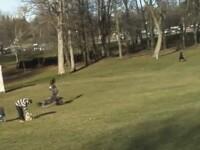 Clipul cu micutul luat pe sus de un vultur, farsa unor studenti. VIDEO