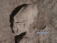 VIDEO. Cranii deformate, descoperite intr-un vechi cimitir din Mexic. \