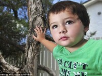 """Ce a gasit o femeie in dulapul fiului ei de 3 ani. """"Puteam fi morti cu totii"""