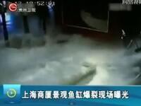 Clipe de groaza intr-un mall din China, dupa ce un acvariu plin cu rechini s-a spart. VIDEO
