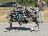 Google a cumparat Boston Dynamics, compania care a dezvoltat un robot autonom inspirat din natura