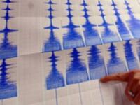 Cutremur cu magnitudinea de 4,8 in zona Vrancea