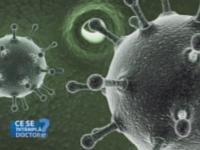 Hepatita C, boala pe care cei mai multi o descopera accidental. Cum va puteti proteja impotriva virusului care nu are vaccin