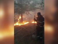 Incendiul din Muntii Buzaului a fost stins dupa mai bine de 15 ore. Peste 100 de oameni s-au luptat cu flacarile imense