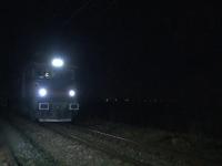 Un cioban a murit in timp ce incerca sa traverseze o cale ferata cu mioarele. De ce nu s-a ferit de tren