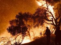 Incendiul din California produce ravagii. Timp de 10 zile nu va mai ploua în zona afectată