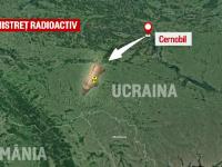 Explicațiile experților după ce un mistreţ radioactiv a fost împuşcat în Suceava