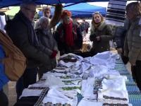 """Turiștii francezi, fascinați de tradițiile din Bucovina: """"Doar în filme am văzut"""""""