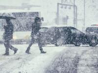 ANM a emis un Cod galben de ninsori și viscol în 13 județe din România