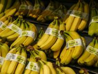 O banană lipită cu bandă adezivă, vândută cu 120.000$ la un târg de artă din Miami