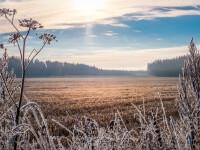 Vreme extrem de rece în România. Temperaturile anunțate de meteorologi