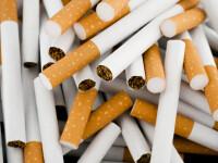 Peste 43.000 de pachete de țigări de contrabandă descoperite la frontieră. Unde erau ascunse