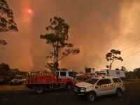 Incendii de vegetație în Australia. Armata a fost chemată să ajute pompierii
