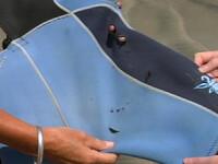 Atat de aproape de moarte. S-a salvat singura din coltii rechinului