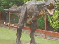 Dinozaurii au luat in stapanire o strada din Londra