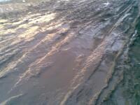 Strada mea e de noroi. In Bucuresti, Sectorul 2