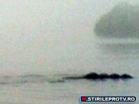 Creatura misterioasa surprinsa intr-un lac din Anglia. FOTO
