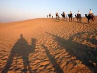 Barbatul care s-a pierdut in desertul Sahara zece zile si a supravietuit cu sange de liliac si propria urina