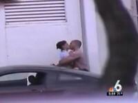 Trei politisti din Miami au fost concediati. Sefii lor, socati cand au vazut ce faceau in misiune