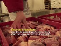 Autoritati: Romania nu a exportat carne de cal etichetata ca vita.