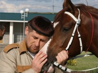 Lectie de viata de la un gangster cecen. Ramzan Kadyrov vrea sa adopte o girafa din Copenhaga, care ar urma sa fie macelarita