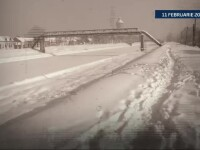 11 februarie in Timisoara: 2012 vs 2014. Altadata sub troiene, vestul Romaniei a fost mai calduros decat nordul Greciei