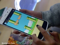 Flappy Bird: Orice aplicatie ce contine cuvantul