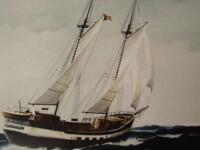Secretele corabiei din