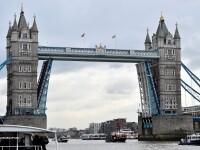 Patru romani au fost condamnati in Marea Britanie pentru ca au furat monede aruncate de turisti la Londra