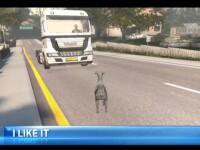 iLikeIT. Cele mai bune titluri pentru pasionatii de simulatoare pe calculator: Project Cars, Goat Simulator, Live for Speed