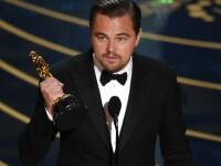 Ce sumă a donat Leonardo DiCaprio pentru refacerea Australiei după incendiile catastrofale