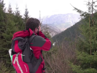 In padurile si muntii din Romania traiesc animale salbatice pe cale de disparitie in Europa. Cat costa