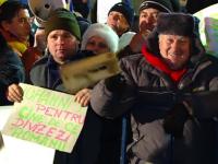 Proteste la Cotroceni: