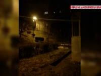 Jandarmii din Brașov, mobilizați să alunge mistreții care se plimbau prin oraș