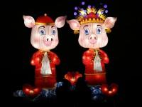 Intrăm în Anul Porcului de Pământ. Astrologii ne spun ce trebuie să facem pentru a avea succes