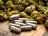 Încă o țară din Europa legalizează canabisul în scop terapeutic