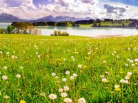 Vreme de primăvară, soare şi temperaturi ridicate în cea mai mare parte a ţării. Prognoza pe 3 zile