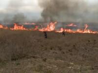 Delta Dunării, mistuită de incendii puternice, de 3 săptămâni. Flăcările, provocate de localnici