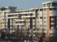 VIDEO. Un ieșean care a închiriat un apartament prin agenție a găsit locuința plină de gândaci